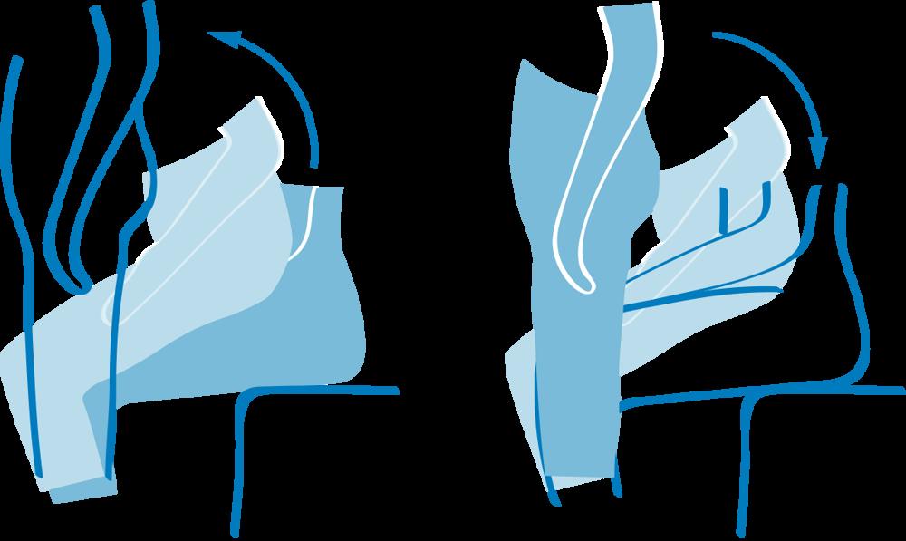 Übung für die Oberschenkel- und Gesäßmuskulatur | Bildquelle: BZgA